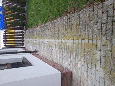 1 zamkova dlazba znecisteni mechy rasami a plisnemi v Drazkovicich